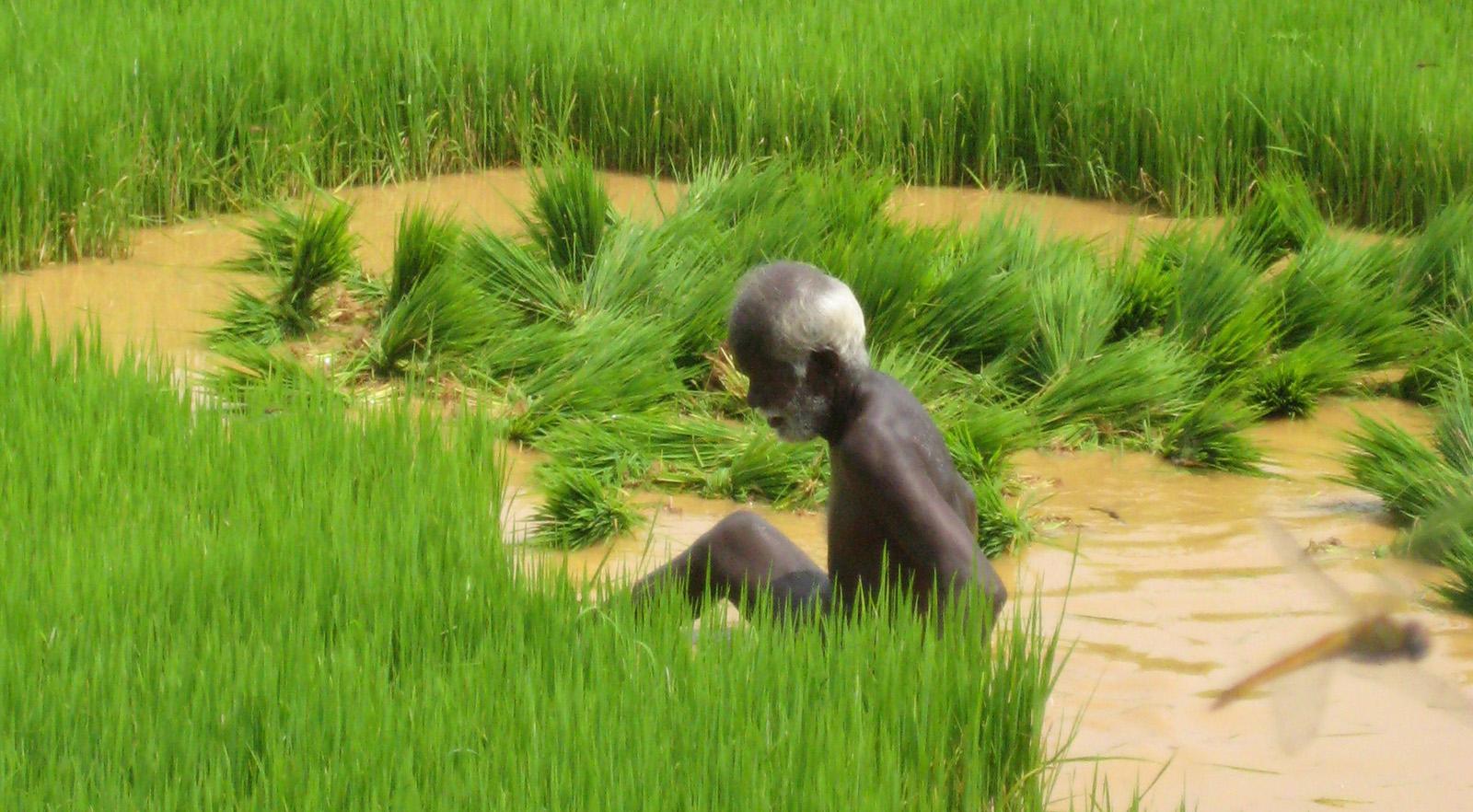 viajes Tamil Nadu 2